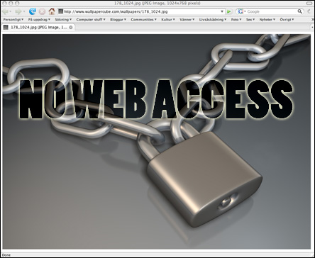 no_web_access