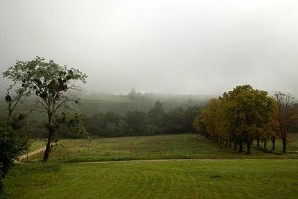 Dimman lättar – utsikt från altanen en tidig morgon på Chateau Garreau
